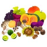 Légumes japonais d'automne Images libres de droits