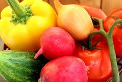 Légumes juteux frais d'un lit de salade photographie stock
