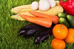 Légumes juteux sur l'herbe verte Images stock