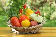 Légumes méditerranéens images libres de droits