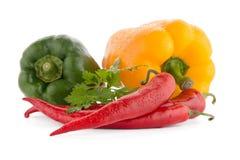 Légumes méditerranéens Photos stock