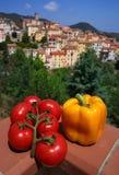 Légumes méditerranéens sur une vue de campagne Photographie stock libre de droits