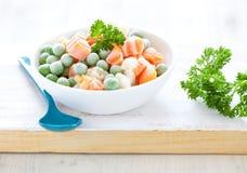Légumes mélangés congelés frais Image stock