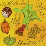 légumes mélangés de jardin frais de fond blancs Photo stock