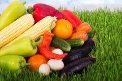 Légumes mûrs sur l'herbe verte Photographie stock
