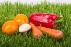 Légumes mûrs sur l'herbe verte Images libres de droits