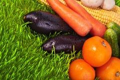 Légumes mûrs sur l'herbe verte Photos libres de droits