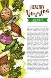 Légumes naturels exotiques, bannière de croquis de vecteur illustration stock