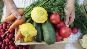 Légumes organiques au marché local du ` s d'agriculteur clips vidéos
