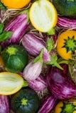 Légumes organiques frais fond, papier peint - courgette ronde Photos libres de droits