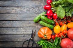 Légumes organiques mûrs photos stock