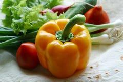 Légumes pour la salade - 1 Images libres de droits