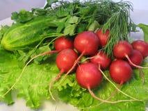 Légumes pour la salade Images libres de droits