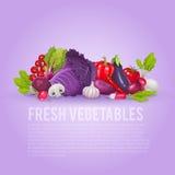 Légumes pourpres et rouges frais Illustration saine et organique de vecteur Photographie stock libre de droits