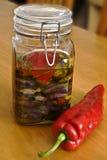 Légumes préservés d'été Photo stock