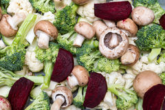 Légumes prêts pour la cuisson Image libre de droits