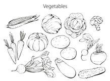 Légumes réglés illustration libre de droits