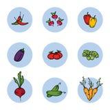 Légumes réglés de l'illustration de vecteur d'icônes Images stock
