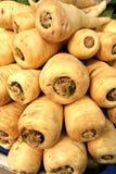 Légumes saisonniers Photographie stock