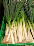 Légumes saisonniers Image stock