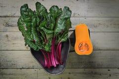 Légumes sur la vieille échelle Images stock