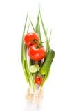 Légumes sur un fond blanc Photos libres de droits