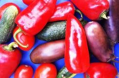 Légumes sur un fond bleu Photographie stock libre de droits