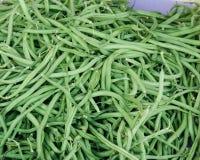 légumes sur un marché rural local dans le mois juillet d'été de la ville photographie stock libre de droits