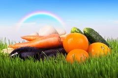 Légumes sur un pré vert Photo stock