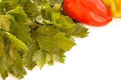 Légumes sur une diagonale Photographie stock libre de droits