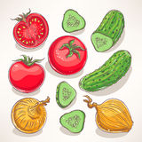 Légumes tirés par la main Photos libres de droits