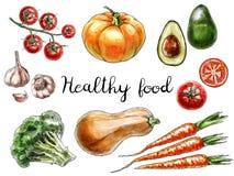 Légumes tirés par la main d'isolement sur le fond blanc illustration stock
