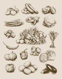 Légumes tirés par la main réglés illustration stock