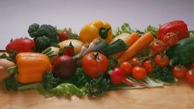 Légumes - tomates, tomates-cerises sur une branche, carottes, oignons, radis, pommes de terre, brocoli photos stock
