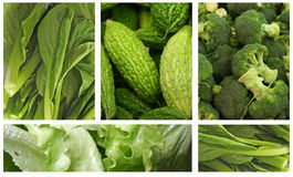 Légumes verts Image stock
