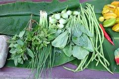 Légumes verts Plan rapproché de récemment récolté Photographie stock libre de droits