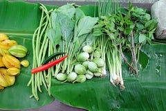Légumes verts Plan rapproché de récemment récolté Photo stock