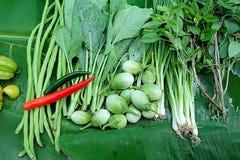 Légumes verts Plan rapproché de récemment récolté Images libres de droits
