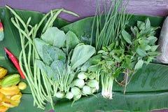 Légumes verts Plan rapproché des légumes récemment récoltés et du x28 ; Poivrons, aubergine, haricots, oignons, kale& x29 ; Image libre de droits
