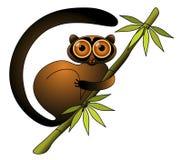 Lémur illustration libre de droits