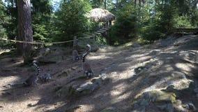 lémures Anillo-atados en el parque zoológico almacen de video