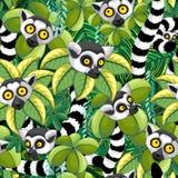 Lémures de Madagascar en diseño inconsútil de la materia textil del vector del modelo de la selva exótica libre illustration