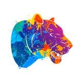 Léopard prédateur abstrait de chat illustration de vecteur