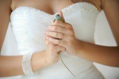 Lézard dans des mains de la jeune mariée Photo stock