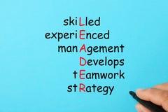 Líder Crossword Concept stock de ilustración