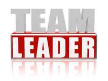 Líder da equipa Imagem de Stock Royalty Free