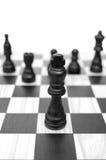 Líder da xadrez Imagens de Stock