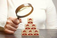 Líder de la mujer en busca de nuevos empleados y especialistas Selección y gestión de personales en un equipo El jefe construye a fotos de archivo libres de regalías