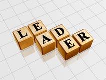 Líder dourado Fotos de Stock