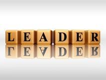 Líder dourado com reflexão Foto de Stock Royalty Free
